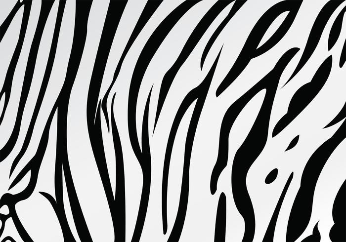 media/image/Tiger.jpg