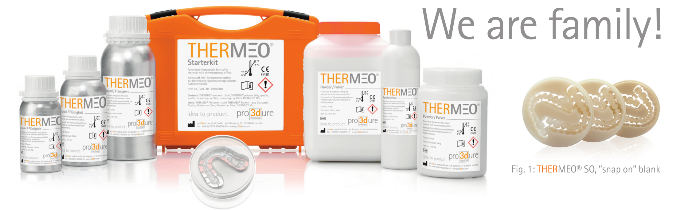 THERMEO-flyer_fig1